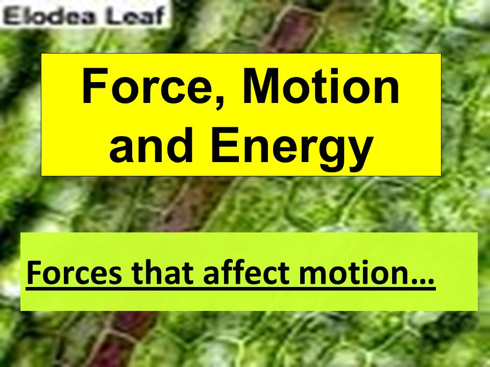 Forces that affect motion… A force is a push or a pull.