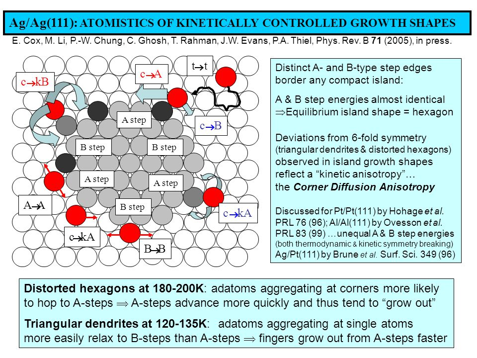 Ag/Ag(111): ATOMISTICS OF KINETICALLY CONTROLLED GROWTH SHAPES Distinct A- and B-type step edges border any compact island: A & B step energies almost identical  Equilibrium island shape = hexagon Deviations from 6-fold symmetry (triangular dendrites & distorted hexagons) observed in island growth shapes reflect a kinetic anisotropy … the Corner Diffusion Anisotropy Discussed for Pt/Pt(111) by Hohage et al.