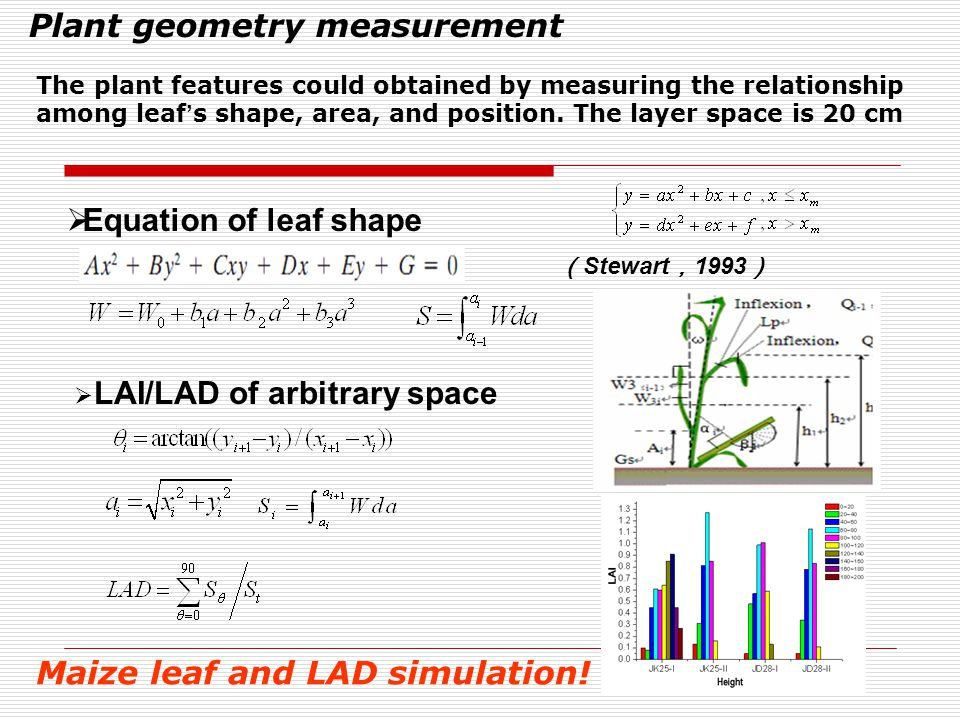  Equation of leaf shape Plant geometry measurement ( Stewart , 1993 )  LAI/LAD of arbitrary space The plant features could obtained by measuring the relationship among leaf ' s shape, area, and position.