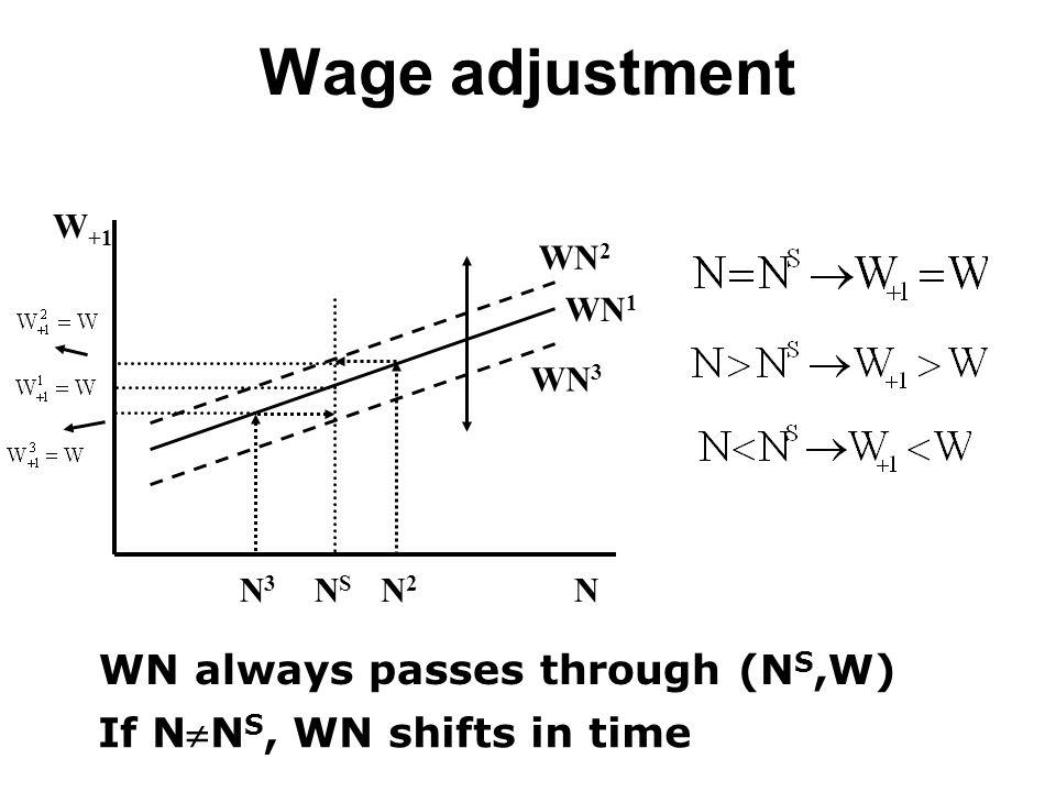 Wage adjustment W +1 N WN1WN1 NSNS WN always passes through (N S,W) If NN S, WN shifts in time N2N2 N3N3 WN2WN2 WN3WN3