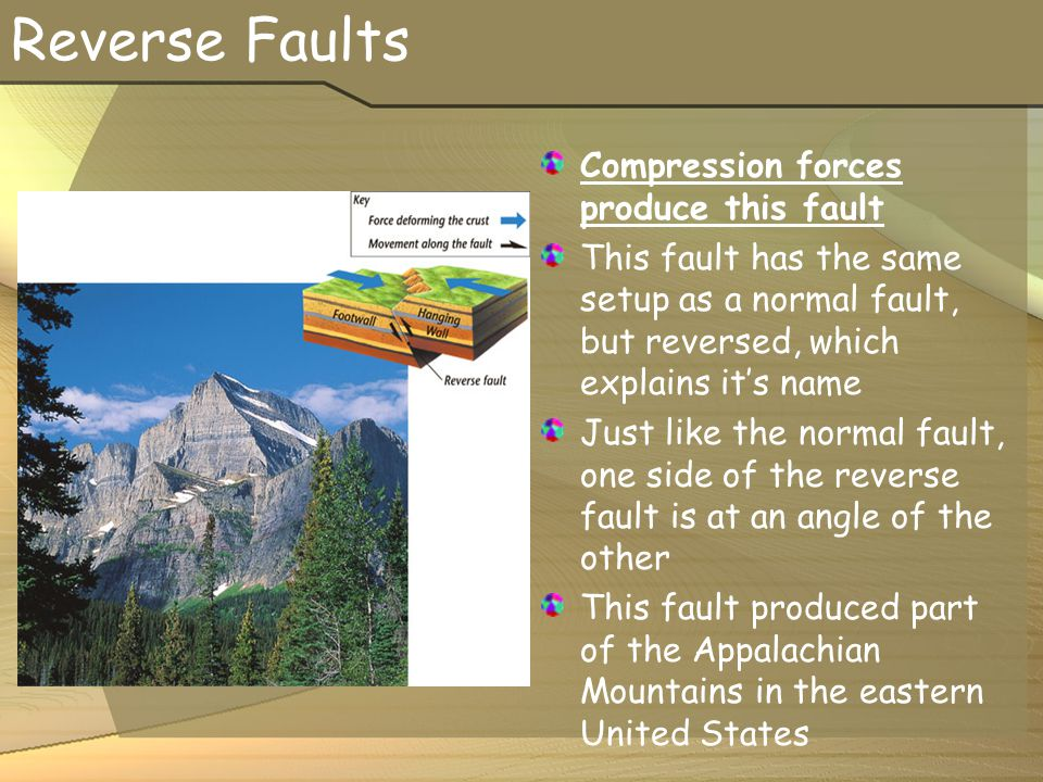 Reverse Faults Compression forces produce this fault This fault has the same setup as a normal fault, but reversed, which explains it's name Just like