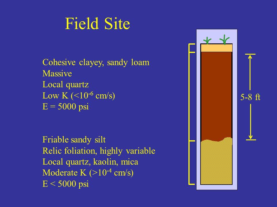 Field Site Cohesive clayey, sandy loam Massive Local quartz Low K (<10 -6 cm/s) E = 5000 psi Friable sandy silt Relic foliation, highly variable Local quartz, kaolin, mica Moderate K (>10 -4 cm/s) E < 5000 psi 5-8 ft