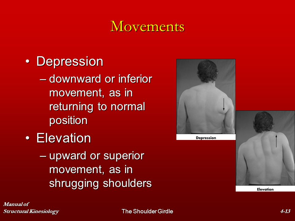 Manual of Structural KinesiologyThe Shoulder Girdle4-13 Movements DepressionDepression –downward or inferior movement, as in returning to normal posit