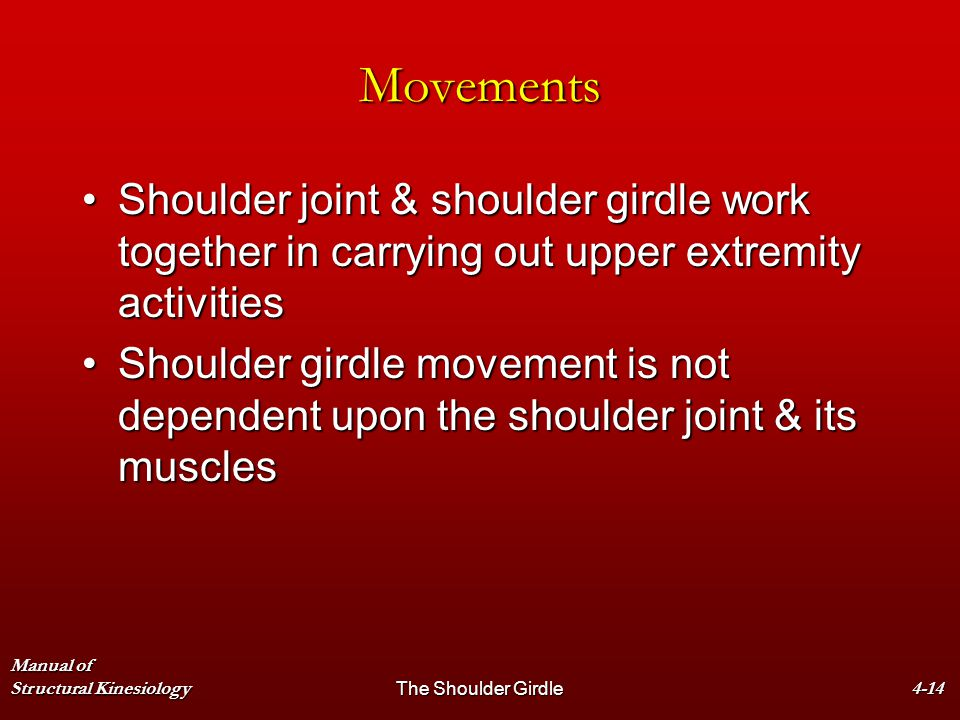 Manual of Structural KinesiologyThe Shoulder Girdle4-14 Movements Shoulder joint & shoulder girdle work together in carrying out upper extremity activ