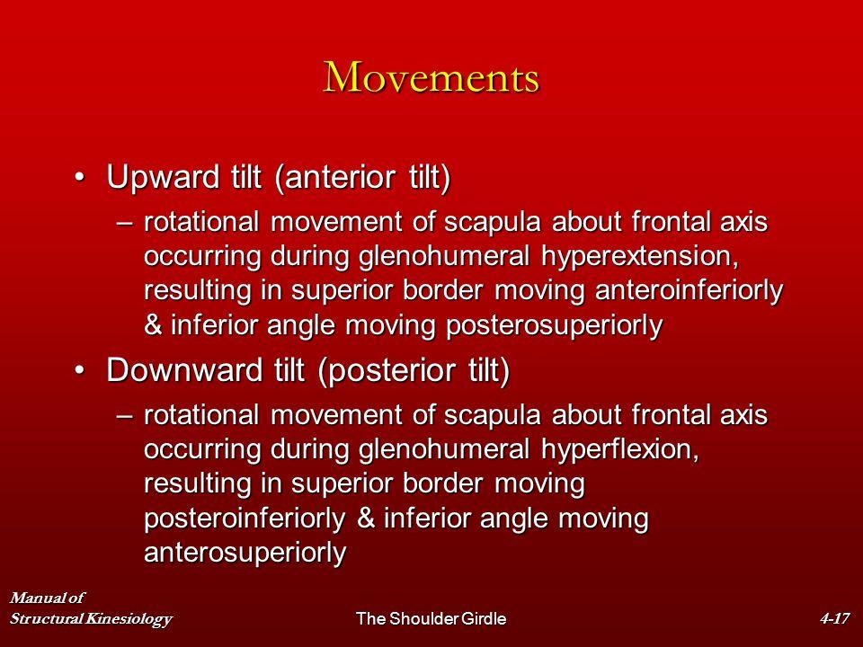 Manual of Structural KinesiologyThe Shoulder Girdle4-17 Movements Upward tilt (anterior tilt)Upward tilt (anterior tilt) –rotational movement of scapu