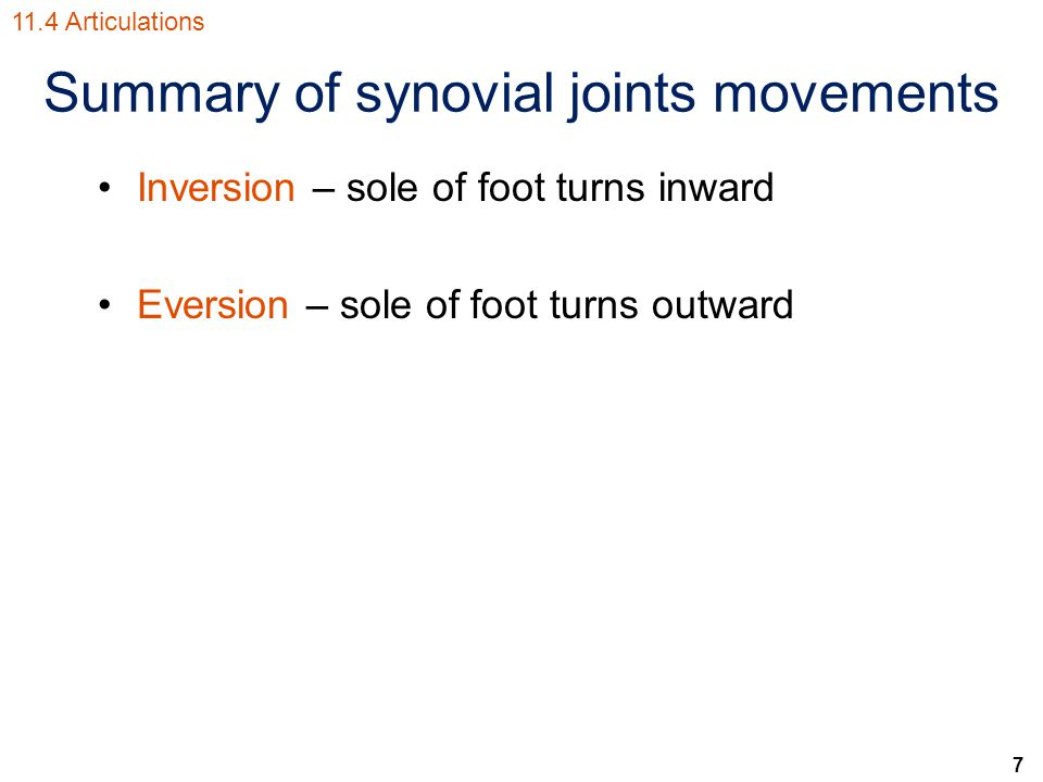 7 Summary of synovial joints movements Inversion – sole of foot turns inward Eversion – sole of foot turns outward 11.4 Articulations