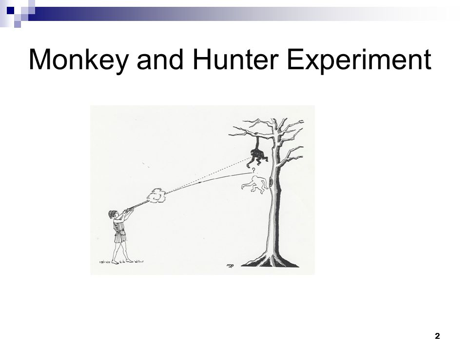 2 Monkey and Hunter Experiment
