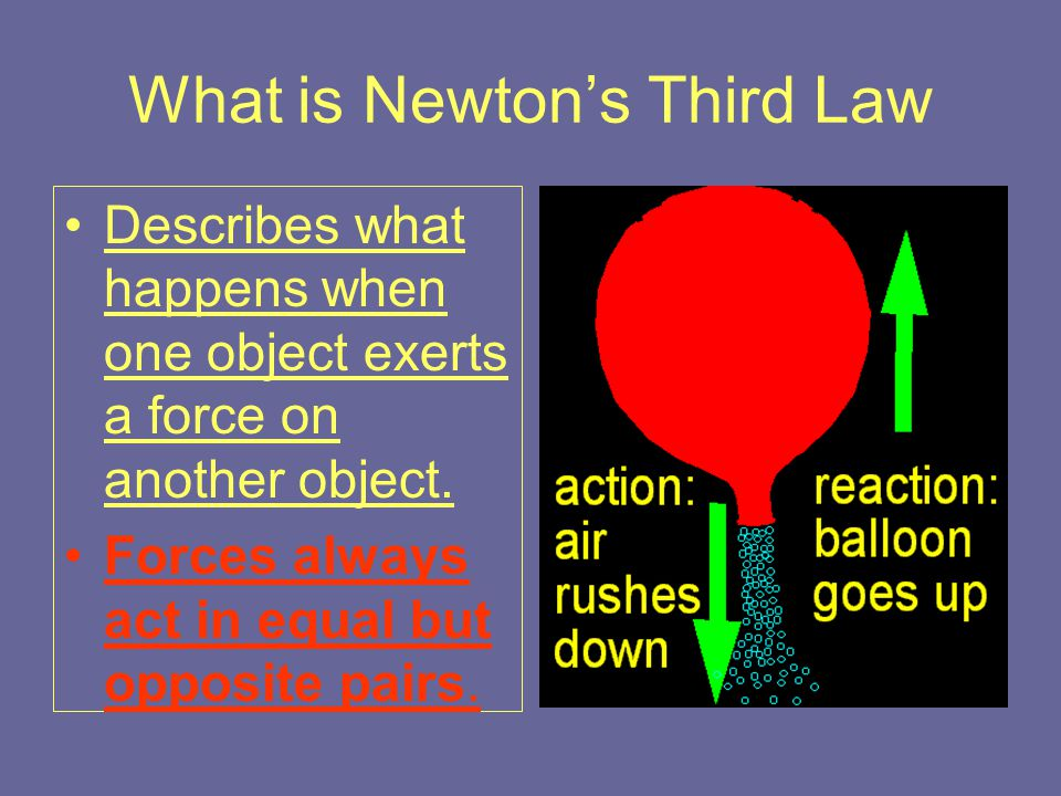 Review: What is Newton's First Question: –What is Newton's First Law?