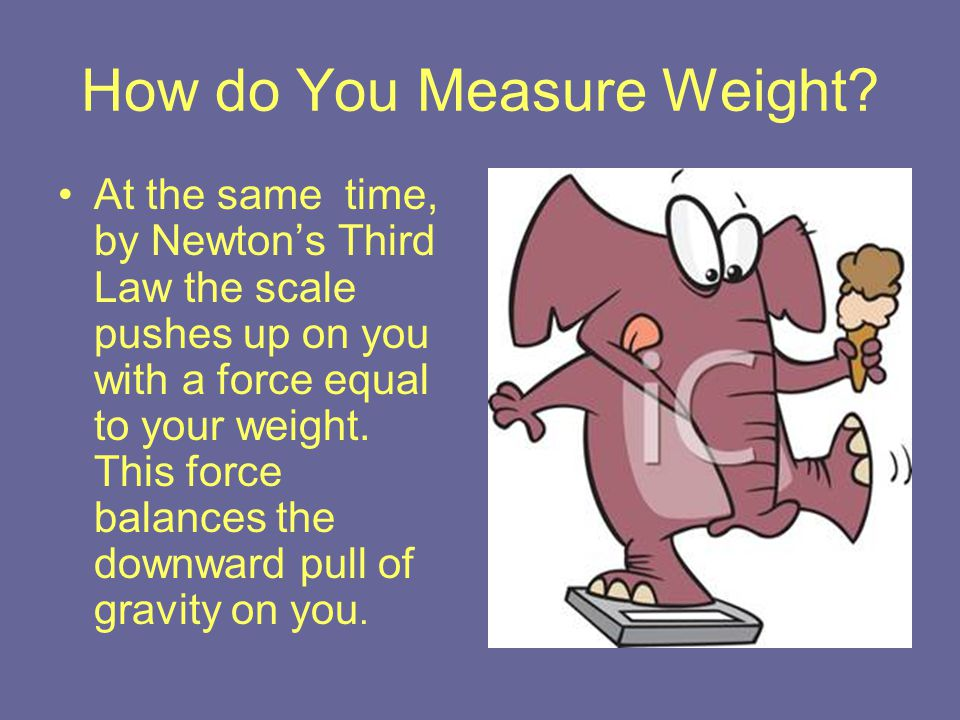 How do You Measure Weight? At the same time, by Newton's Third Law the scale pushes up on you with a force equal to your weight. This force balances t