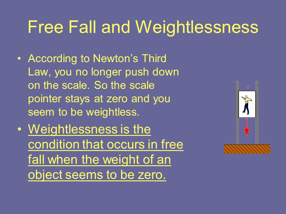 Free Fall and Weightlessness According to Newton's Third Law, you no longer push down on the scale. So the scale pointer stays at zero and you seem to