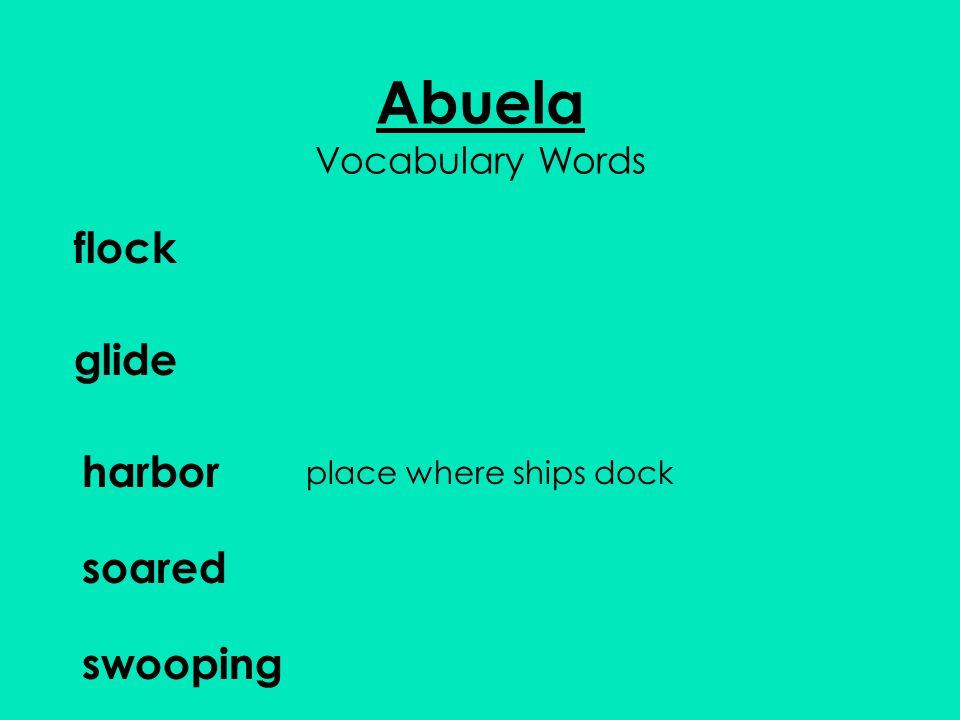 Abuela Vocabulary Words flock glide harbor soared swooping place where ships dock