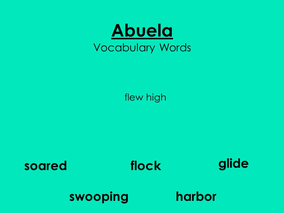 Abuela Vocabulary Words flock glide harbor soared swooping flew high