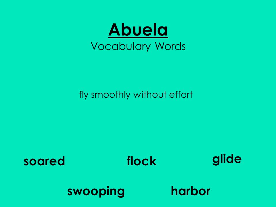 Abuela Vocabulary Words flock glide harbor soared swooping fly smoothly without effort