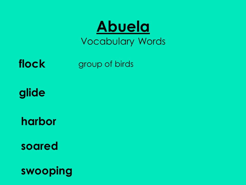 Abuela Vocabulary Words flock group of birds glide harbor soared swooping