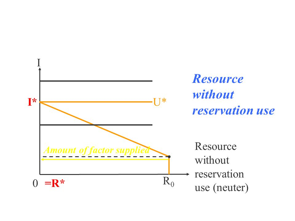 I 0 R0R0 Resource without reservation use (neuter) U* Resource without reservation use I* =R* Amount of factor supplied