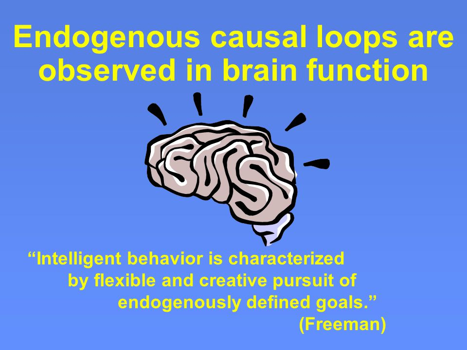 Endogenous causal loops are observed in brain function Intelligent behavior is characterized by flexible and creative pursuit of endogenously defined goals. (Freeman)