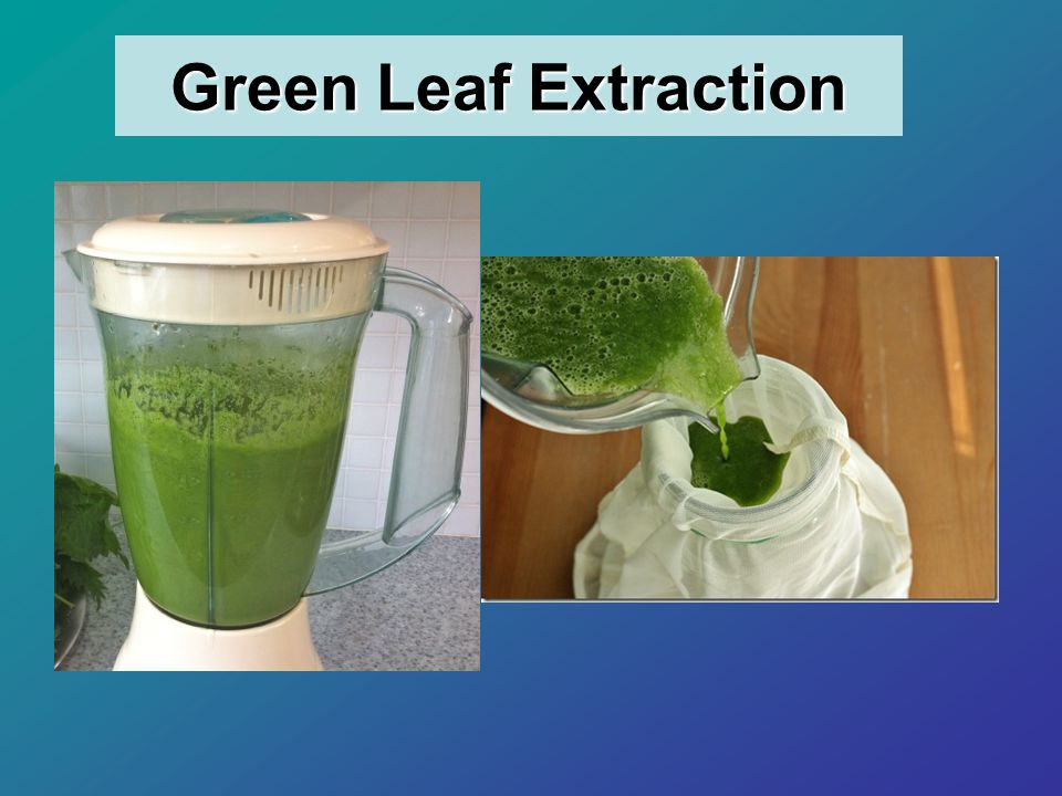 Green Leaf Extraction