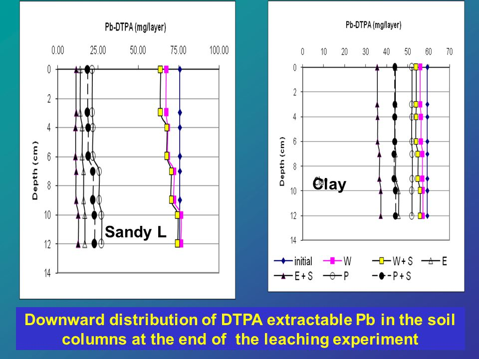Clay Sandy L Downward distribution of DTPA extractable Pb in the soil columns at the end of the leaching experiment