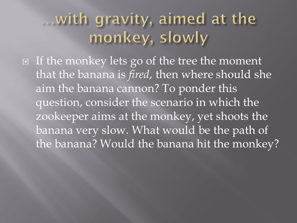  If the monkey lets go of the tree the moment that the banana is fired, then where should she aim the banana cannon? To ponder this question, conside