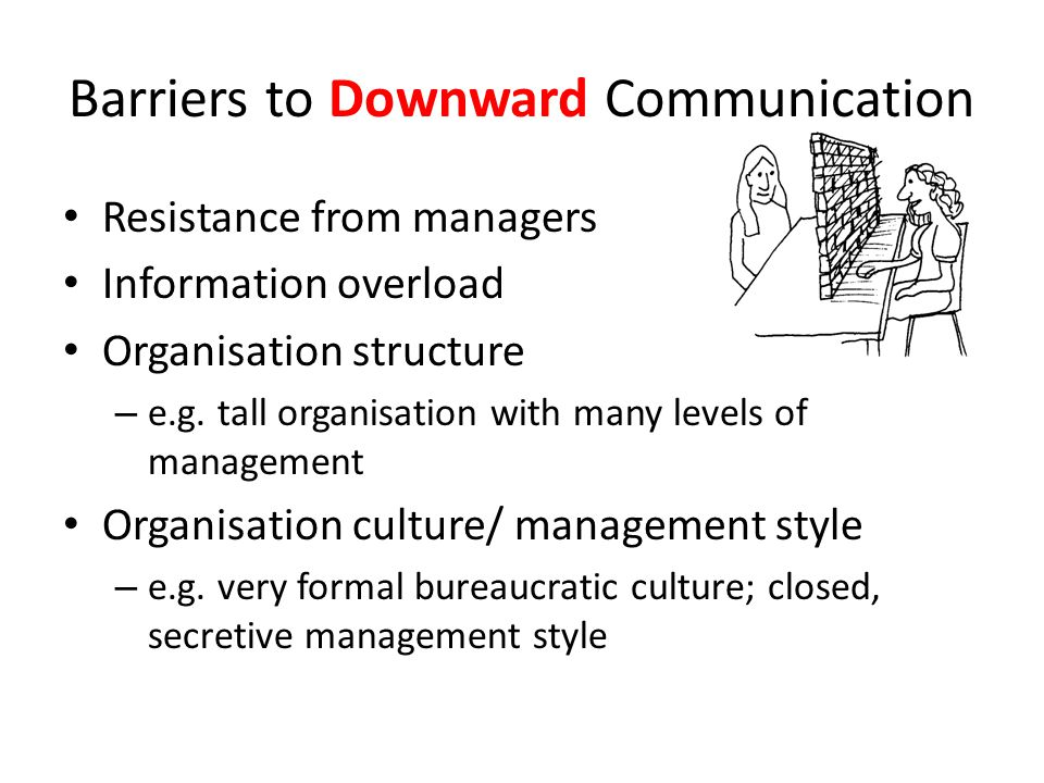 Resistance from managers Information overload Organisation structure – e.g.