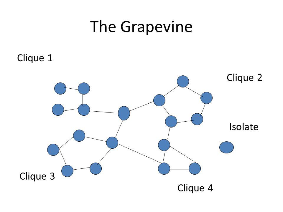 Clique 1 The Grapevine Clique 2 Clique 3 Clique 4 Isolate