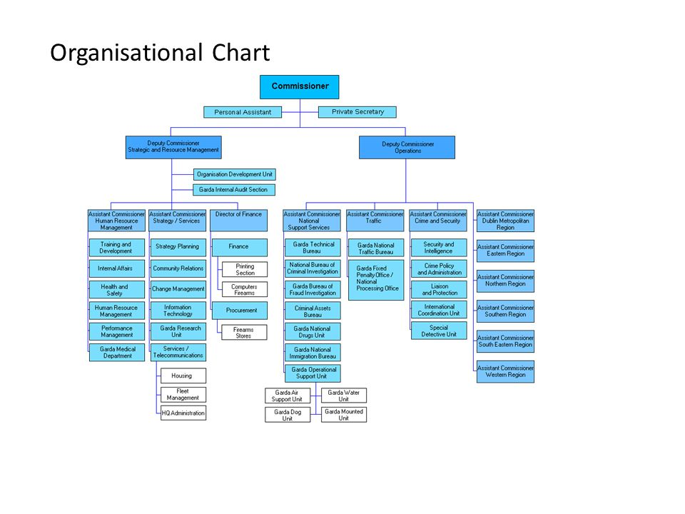 Task: Organisation Chart Identify an organisation to which you belong or have belonged.