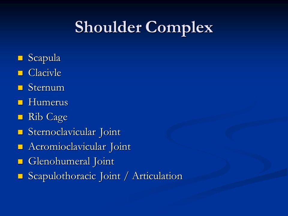 Shoulder Complex Scapula Scapula Clacivle Clacivle Sternum Sternum Humerus Humerus Rib Cage Rib Cage Sternoclavicular Joint Sternoclavicular Joint Acr