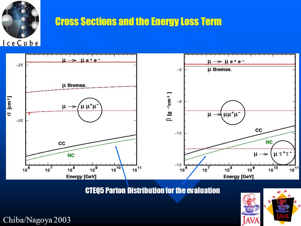 Chiba/Nagoya 2003 Cross Sections and the Energy Loss Term CTEQ5 Parton Distribution for the evaluation