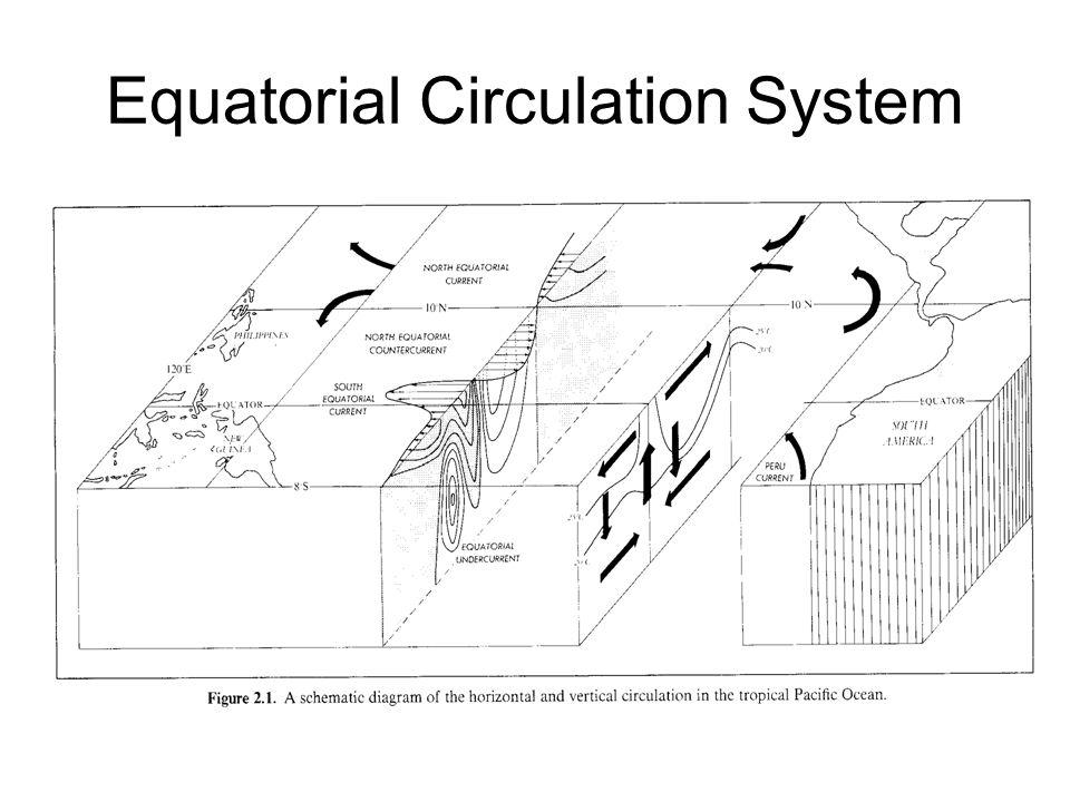 Equatorial Circulation System