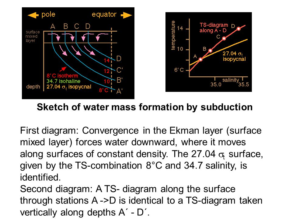 Sketch of water mass formation by subduction First diagram: Convergence in the Ekman layer (surface mixed layer) forces water downward, where it moves along surfaces of constant density.