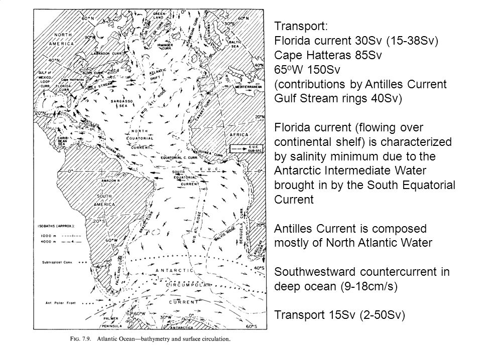 Transport: Florida current 30Sv (15-38Sv) Cape Hatteras 85Sv 65 o W 150Sv (contributions by Antilles Current Gulf Stream rings 40Sv) Florida current (flowing over continental shelf) is characterized by salinity minimum due to the Antarctic Intermediate Water brought in by the South Equatorial Current Antilles Current is composed mostly of North Atlantic Water Southwestward countercurrent in deep ocean (9-18cm/s) Transport 15Sv (2-50Sv)