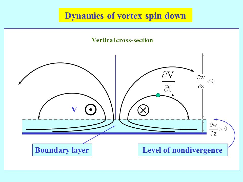 Boundary layerLevel of nondivergence V Vertical cross-section Dynamics of vortex spin down  