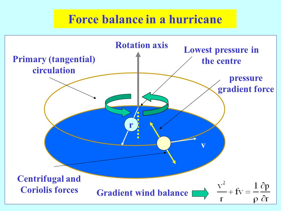 v Lowest pressure in the centre Rotation axis pressure gradient force Centrifugal and Coriolis forces Gradient wind balance Primary (tangential) circulation Force balance in a hurricane r