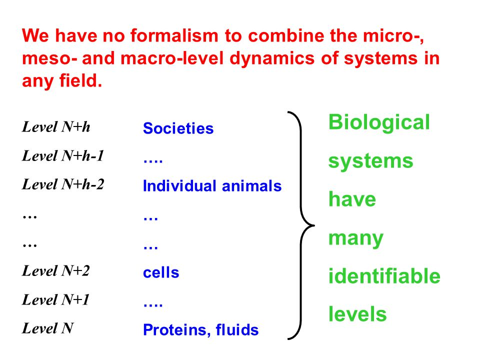 We have no formalism to combine the micro-, meso- and macro-level dynamics of systems in any field.