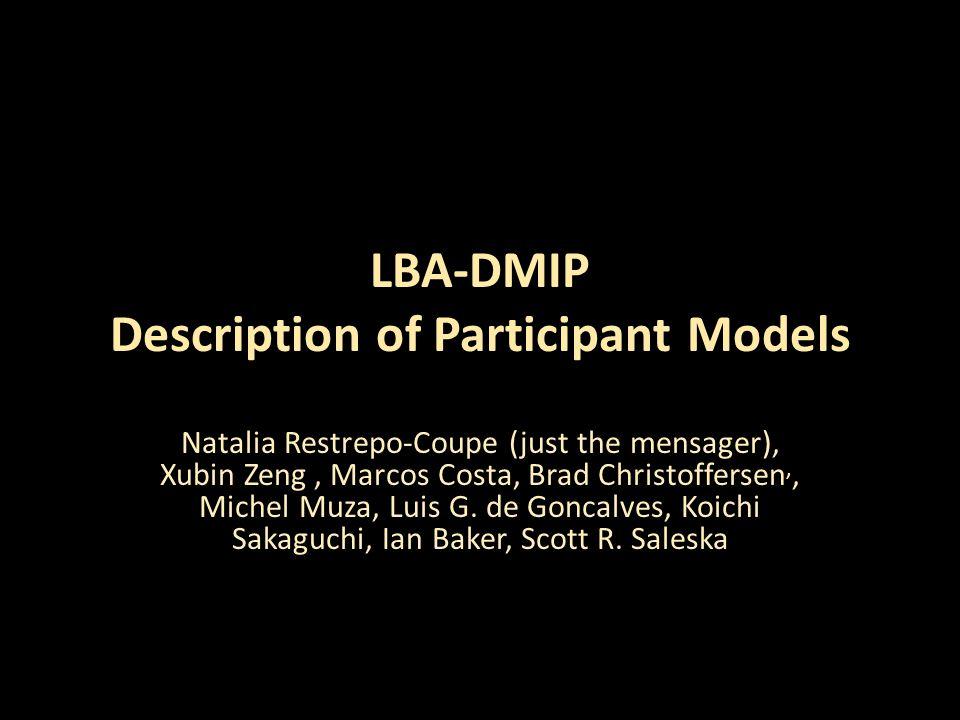 LBA-DMIP Description of Participant Models Natalia Restrepo-Coupe (just the mensager), Xubin Zeng, Marcos Costa, Brad Christoffersen,, Michel Muza, Luis G.