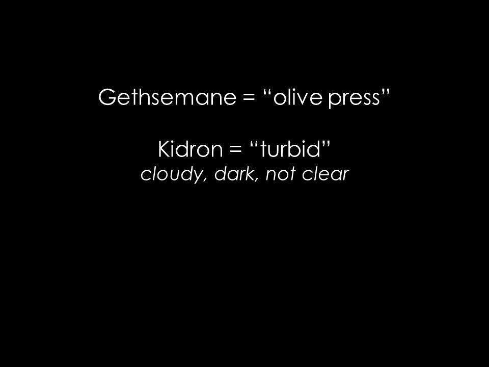 Gethsemane = olive press Kidron = turbid cloudy, dark, not clear