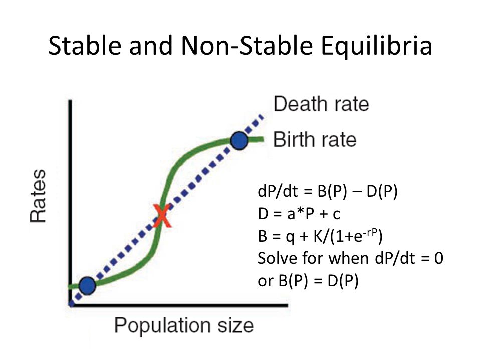 Stable and Non-Stable Equilibria dP/dt = B(P) – D(P) D = a*P + c B = q + K/(1+e -rP ) Solve for when dP/dt = 0 or B(P) = D(P)