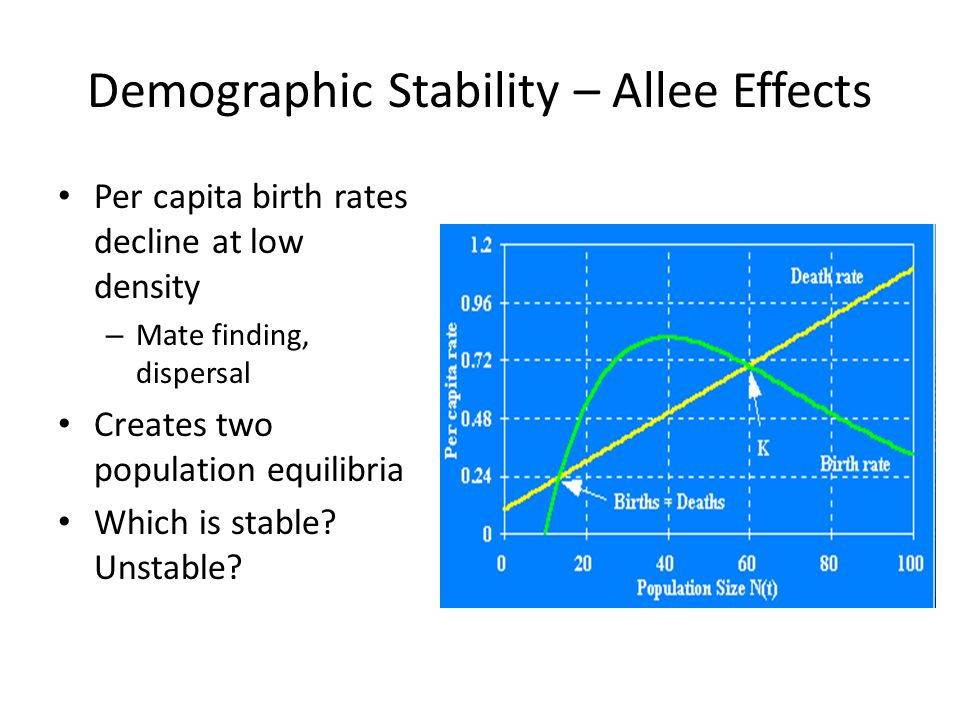 Demographic Stability – Allee Effects Per capita birth rates decline at low density – Mate finding, dispersal Creates two population equilibria Which