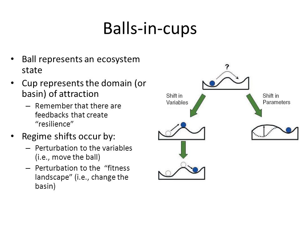 Balls-in-cups Ball represents an ecosystem state Cup represents the domain (or basin) of attraction – Remember that there are feedbacks that create resilience Regime shifts occur by: – Perturbation to the variables (i.e., move the ball) – Perturbation to the fitness landscape (i.e., change the basin)