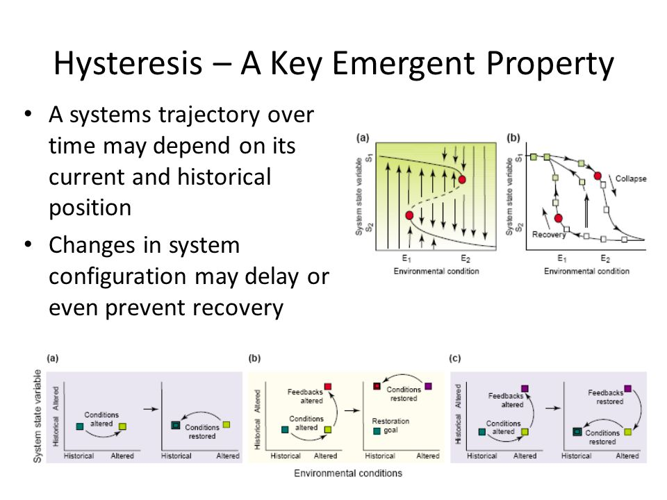 Hysteresis – A Key Emergent Property A systems trajectory over time may depend on its current and historical position Changes in system configuration may delay or even prevent recovery Suding et al.