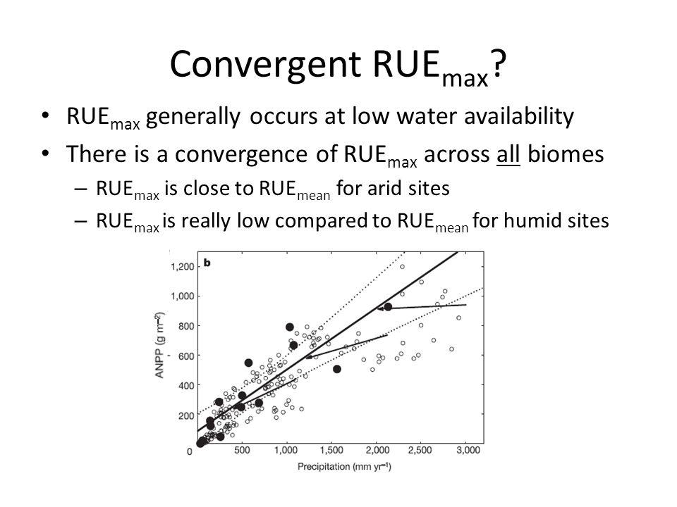 Convergent RUE max .