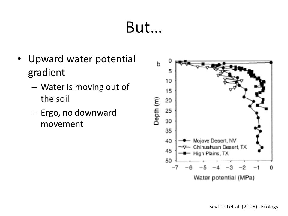 But… Upward water potential gradient – Water is moving out of the soil – Ergo, no downward movement Seyfried et al.