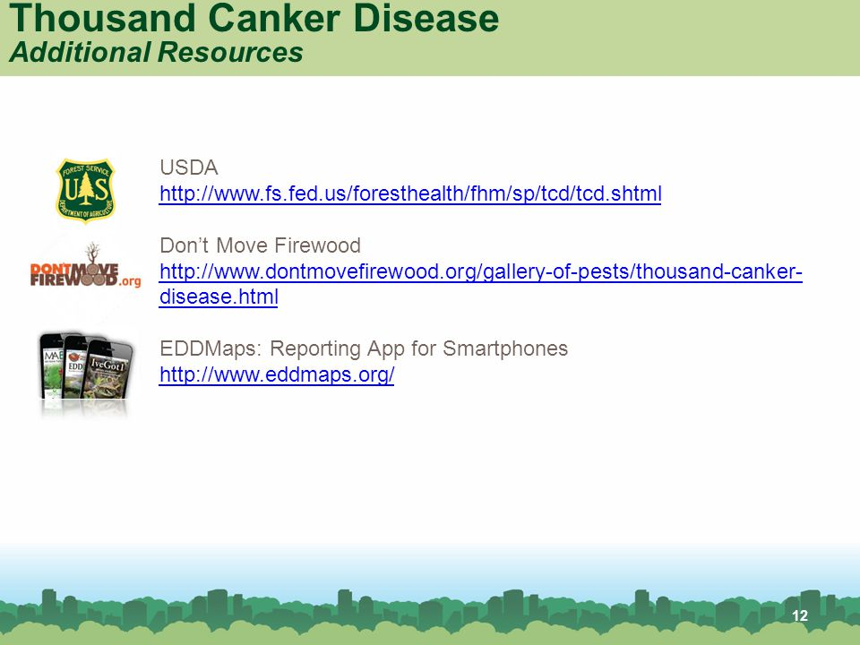 12 Thousand Canker Disease Additional Resources USDA http://www.fs.fed.us/foresthealth/fhm/sp/tcd/tcd.shtml Don't Move Firewood http://www.dontmovefirewood.org/gallery-of-pests/thousand-canker- disease.html EDDMaps: Reporting App for Smartphones http://www.eddmaps.org/