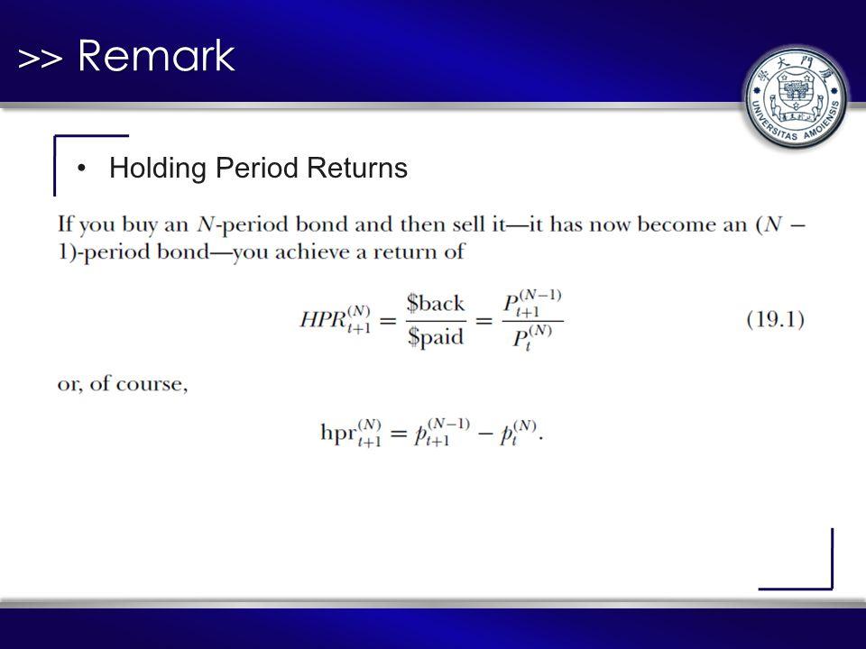 >> Remark Holding Period Returns