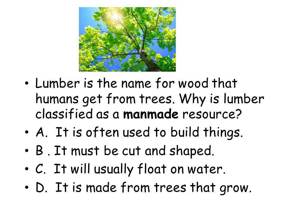 Lumber is the name for wood that humans get from trees. Why is lumber classified as a manmade resource? A. It is often used to build things. B. It mus