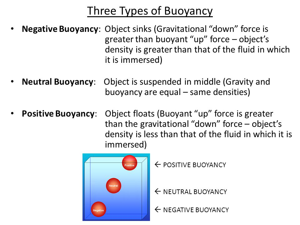 Three Types of Buoyancy Negative Buoyancy: Object sinks (Gravitational down force is greater than buoyant up force – object's density is greater than that of the fluid in which it is immersed) Neutral Buoyancy: Object is suspended in middle (Gravity and buoyancy are equal – same densities) Positive Buoyancy: Object floats (Buoyant up force is greater than the gravitational down force – object's density is less than that of the fluid in which it is immersed)  POSITIVE BUOYANCY  NEUTRAL BUOYANCY  NEGATIVE BUOYANCY
