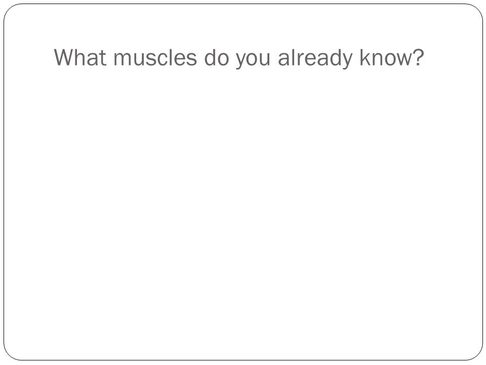 What muscles do you already know?