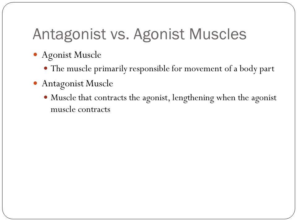 Antagonist vs. Agonist Muscles Agonist Muscle The muscle primarily responsible for movement of a body part Antagonist Muscle Muscle that contracts the