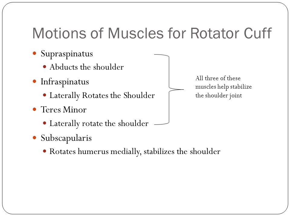 Motions of Muscles for Rotator Cuff Supraspinatus Abducts the shoulder Infraspinatus Laterally Rotates the Shoulder Teres Minor Laterally rotate the s