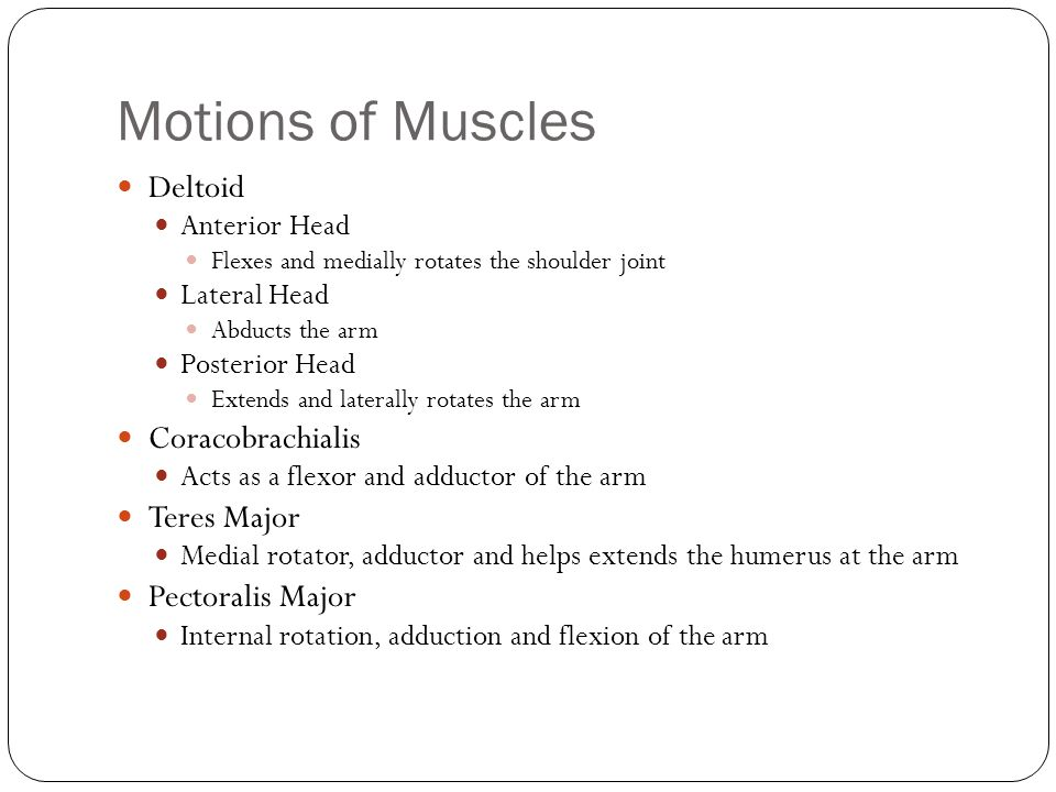Motions of Muscles Deltoid Anterior Head Flexes and medially rotates the shoulder joint Lateral Head Abducts the arm Posterior Head Extends and latera
